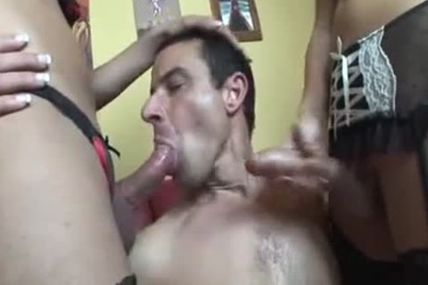 lingeried sheladys In 3some Jazzing